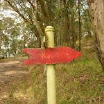 Red track track marker near the Mt Sugarloaf car park (324257)