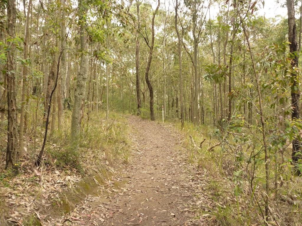 Red track on Mt Sugarloaf near Newcastle