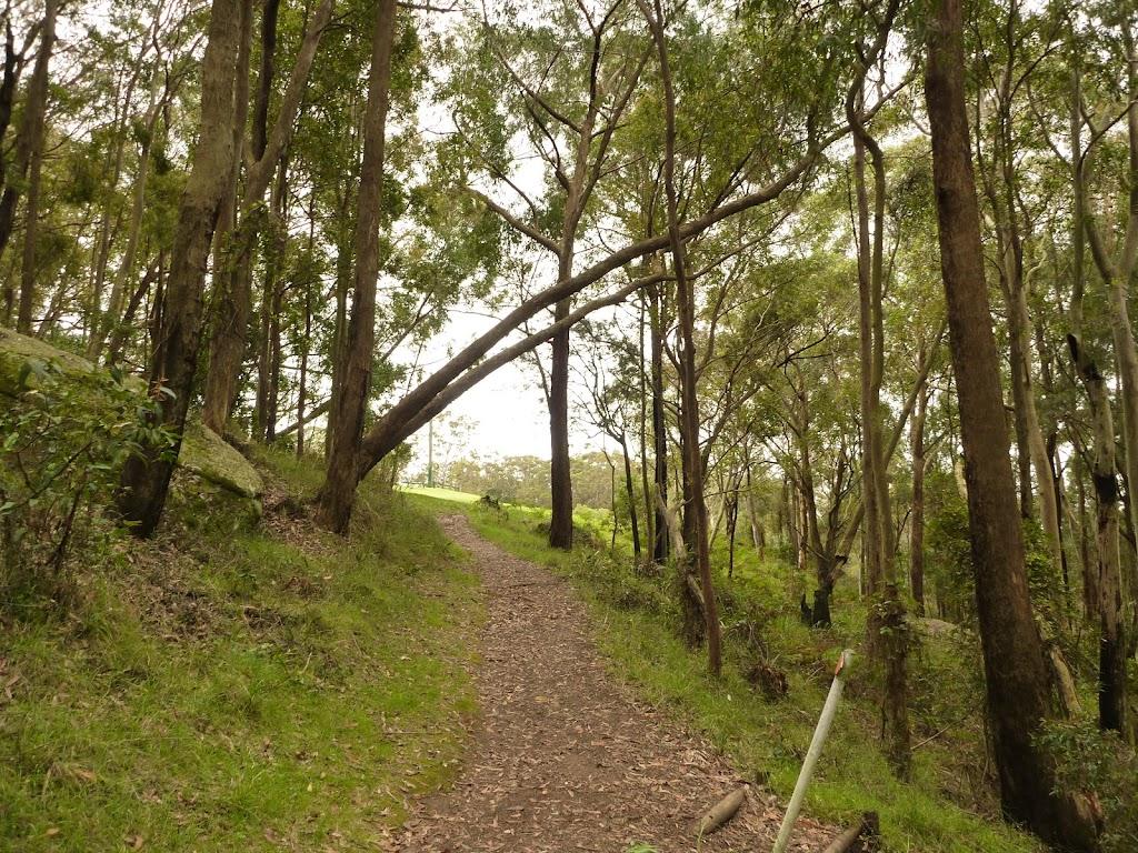 Track leading to Mt Sugarloaf car park