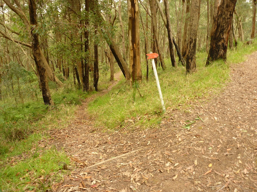 Track marker on the red track near the summit of Mt Sugarloaf