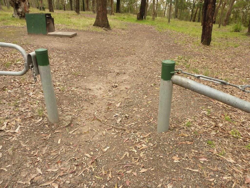 Green metal track markers near Mt Sugarloaf