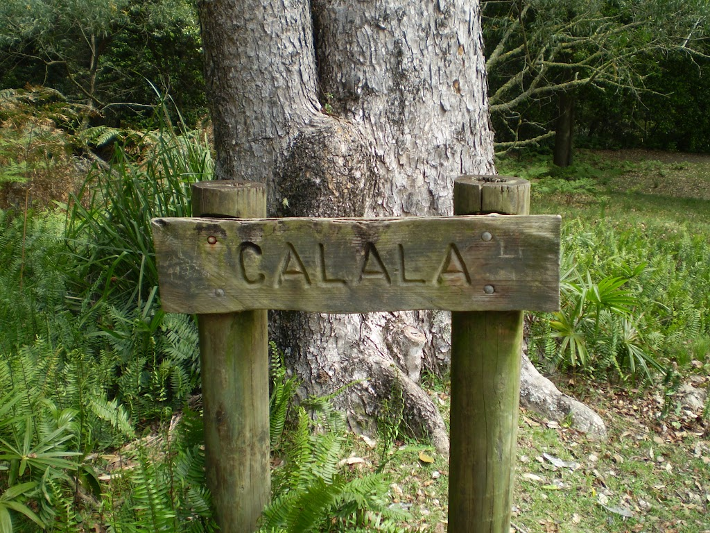 Calala sign on Lady Carrington Drive
