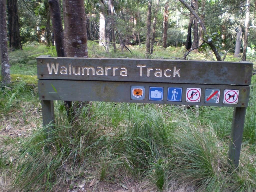 At Int of Lady Carrington Drive and Walllamarra Bushtrack