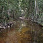 Bola Creek (32774)