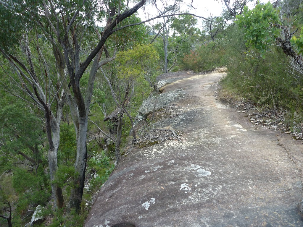 Walking along a rock platform west of Hornsby Heights (328256)