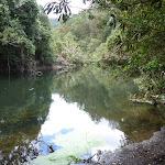 Berowra Creek near Provest Creek (328628)