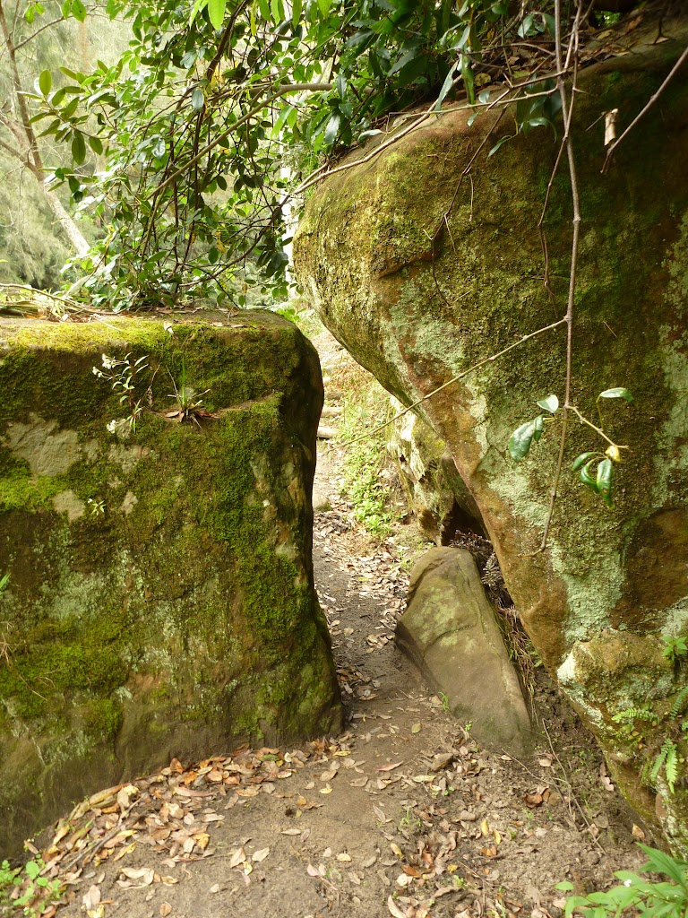 Track squeezing through gap in rock south of Berowra Creek campsite (328961)