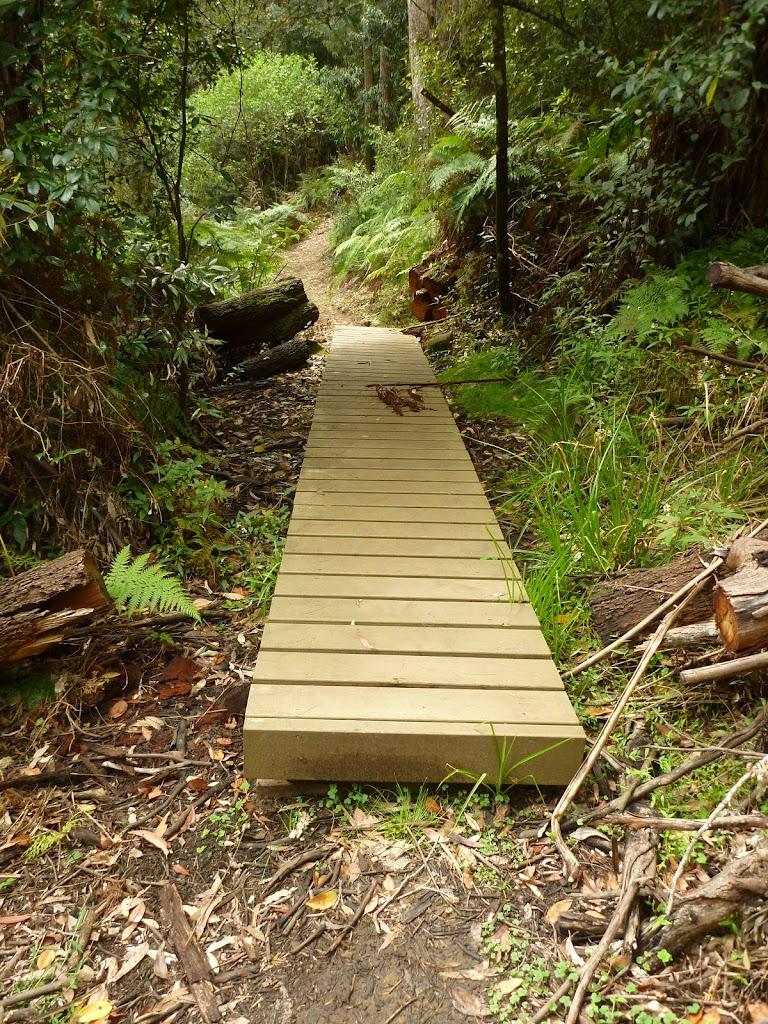 Board walk south of Berowra Creek campsite