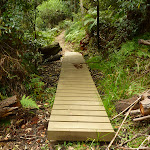 Board walk south of Berowra Creek campsite (328997)