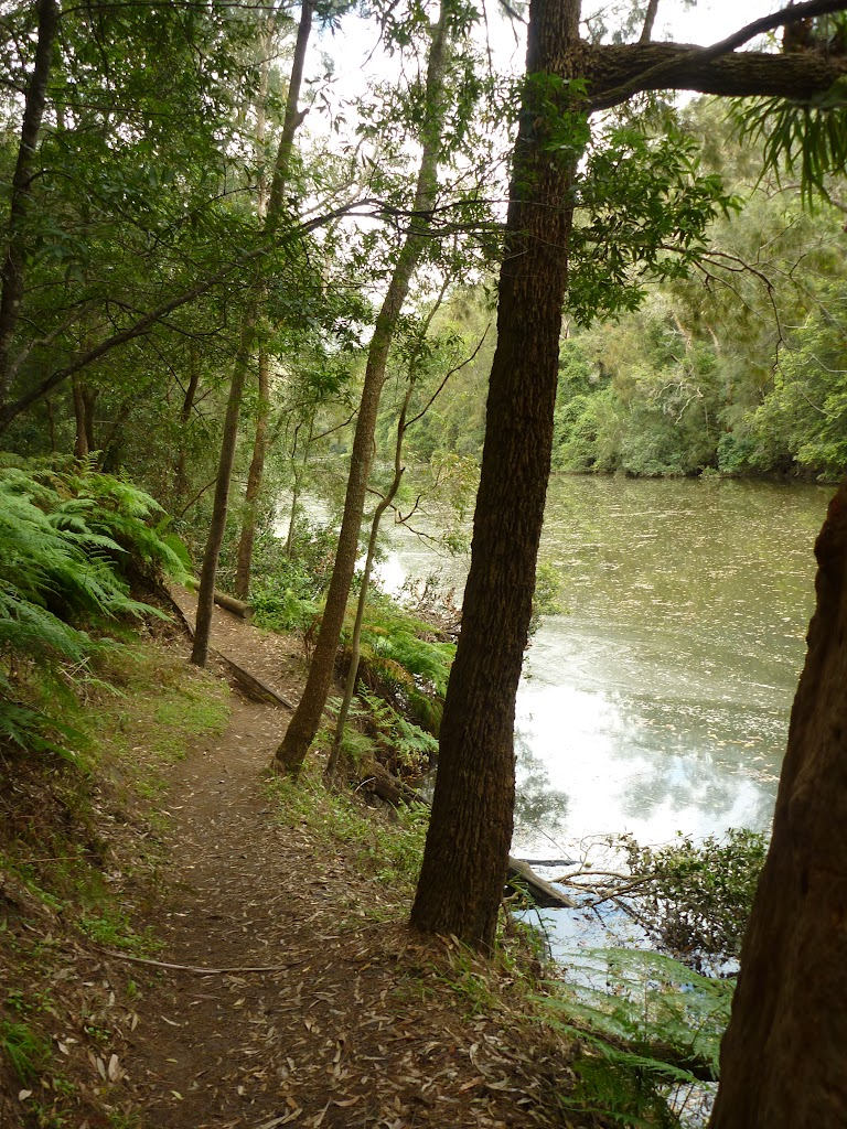 Berowra Creek (329114)
