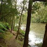 Berowra Creek (329114)