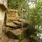 Steps south of Berowra Creek campsite (329135)