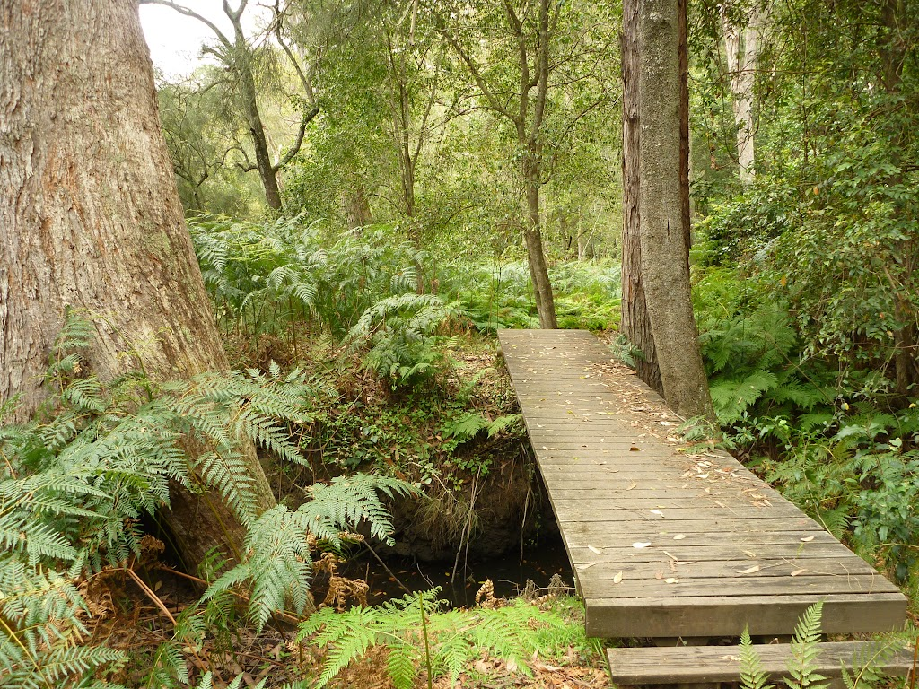 Bridge just east of Berowra Creek campsite
