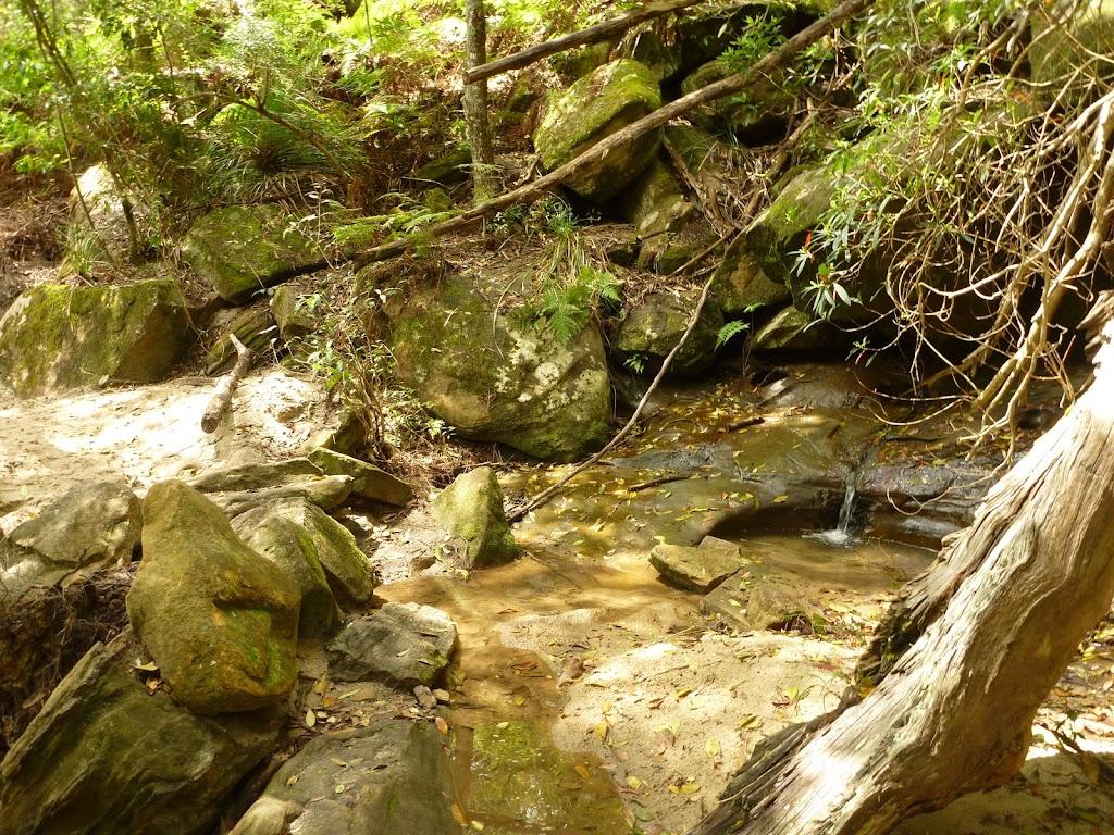 Creek crossing north of Berowra Creek campsite
