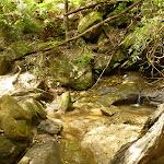 Creek crossing north of Berowra Creek campsite (329384)