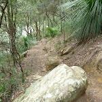 Rocky track south of Crosslands (329660)