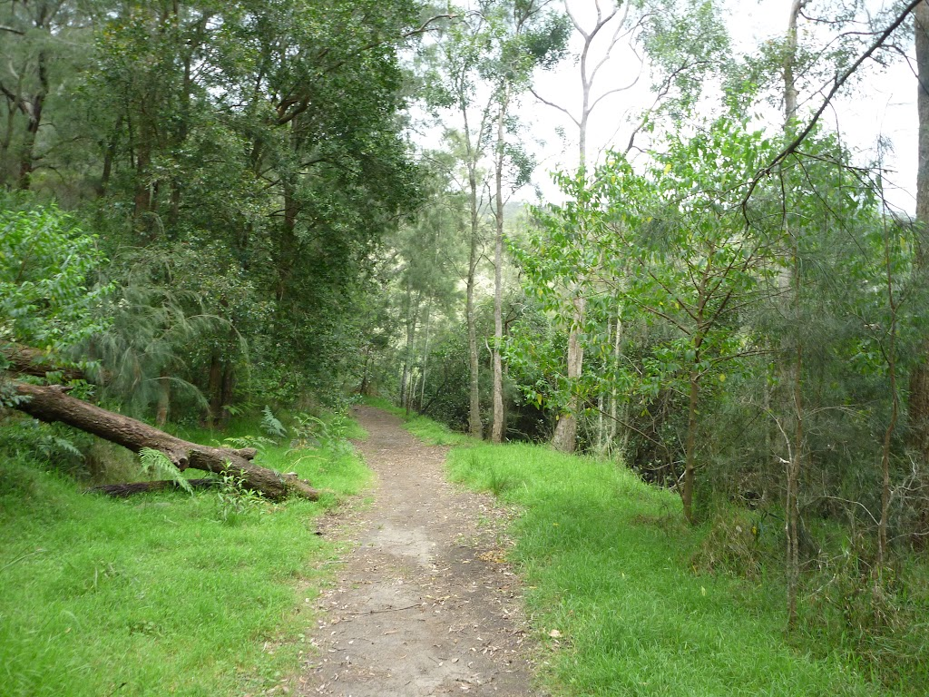 Wide track on the southern side of Crosslands Reserve (329687)