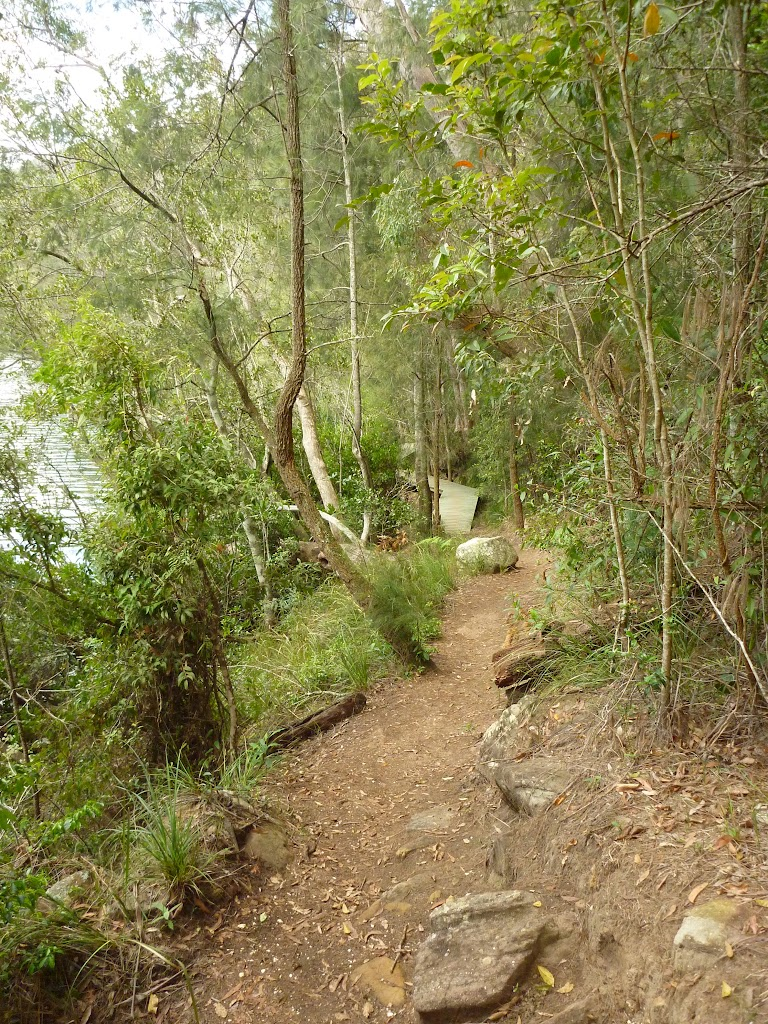 Rocky track east of Berowra Creek Lookout (330404)