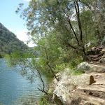 Track beside Berowra Creek (330533)