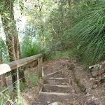 Steps west of Calna Creek (330680)