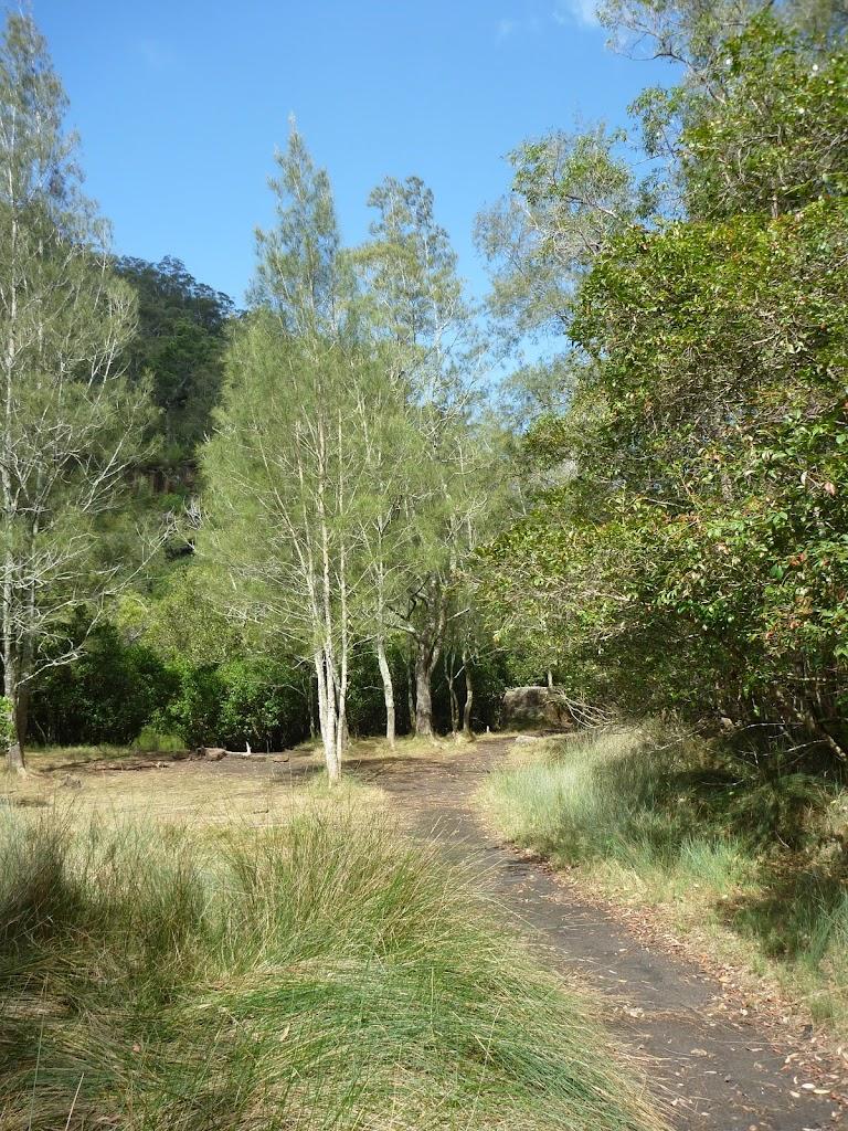 Flat marshland on south side of Sams Creek