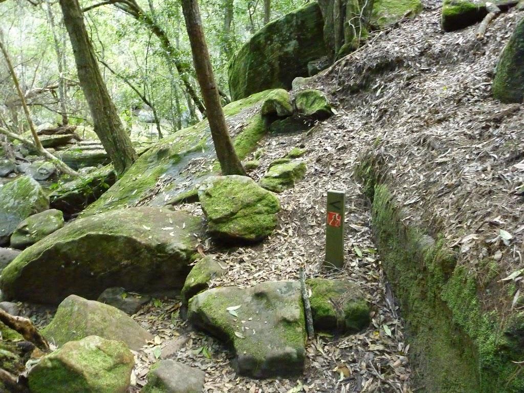 GNW arrow post near Sams Creek