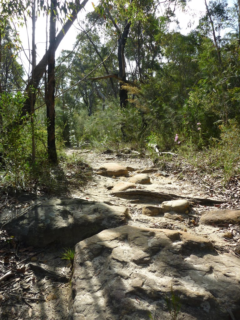 Rocky track South of Berowra Heights