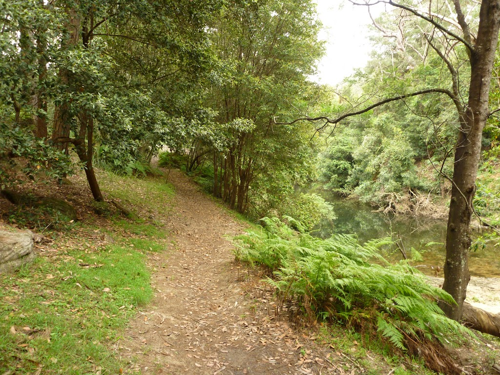 Walking alongside Waitara Creek (333002)