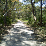 The squeezway near Lilyvale track (33305)