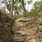 Steep track on western side of Waitara Creek (333146)