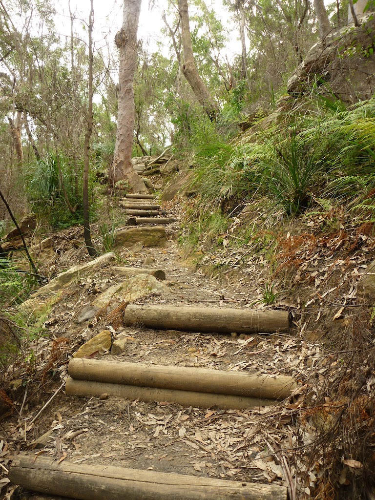 Climbing up the side of the Berowra Creek Valley (333746)