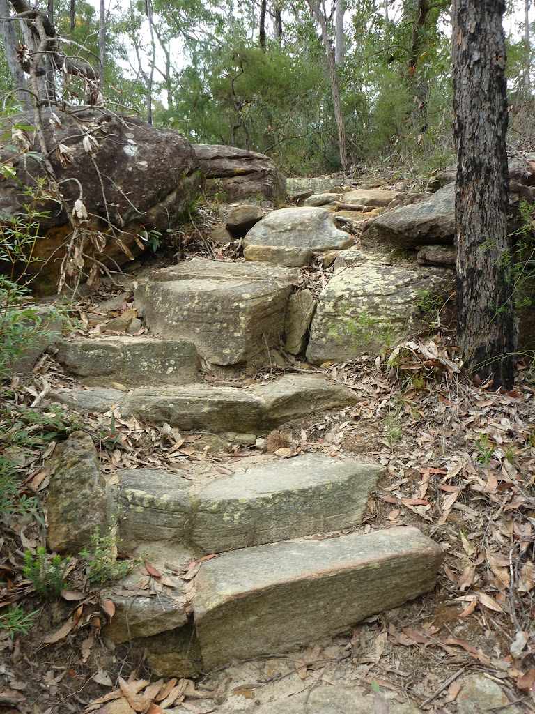 Rock steps north of Elouera lookout (333971)