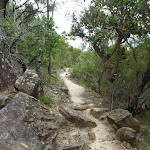 Rocky track north of Elouera lookout
