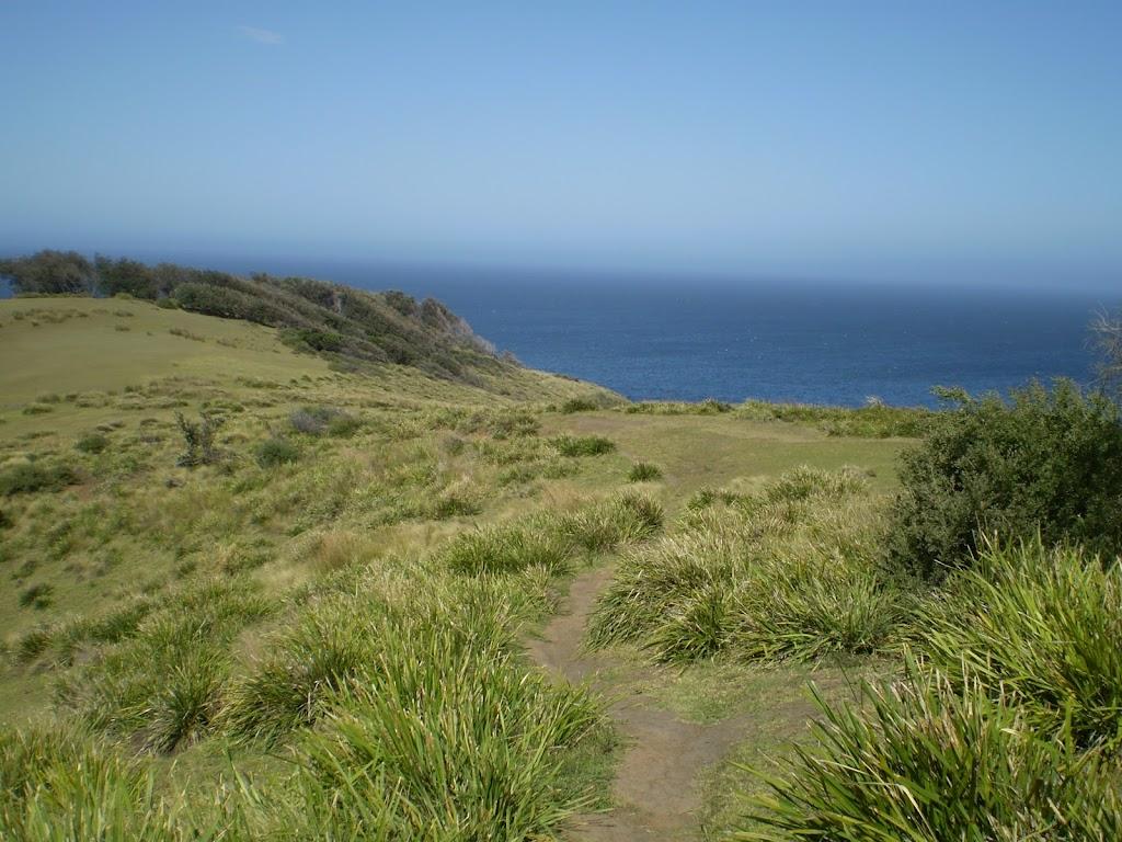 The track through the grasslands on the Burgh Ridge