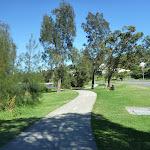 Looking Through Warner reserve (335986)