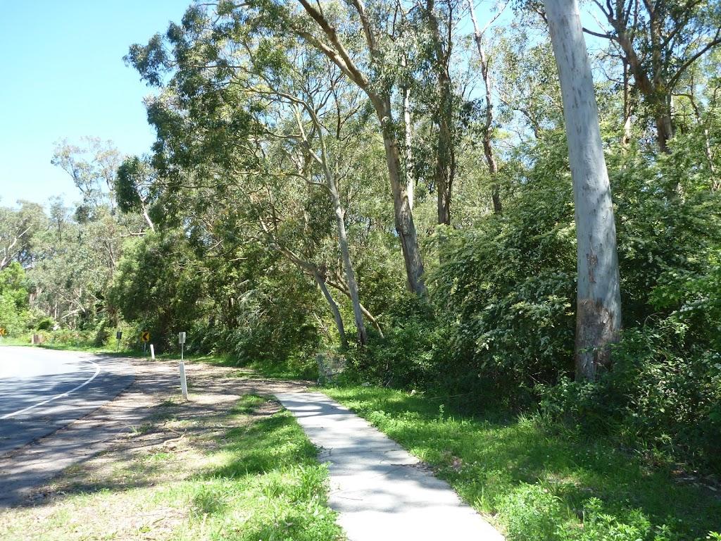 Following the Great North Walk Next to Waratah  Avenue