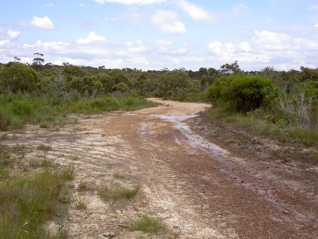 Rocky service trail