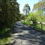 Fernleigh Track (338266)