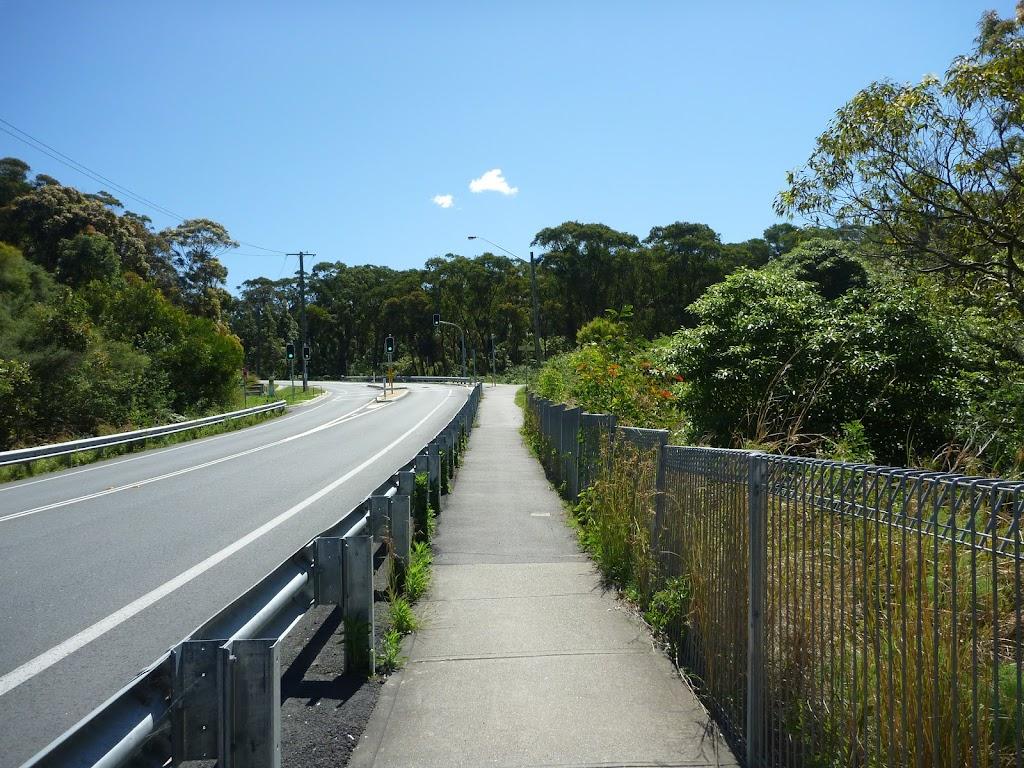 Great North walk beside Burwood Rd