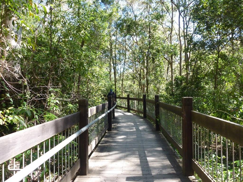 Yuelarbah tree top board walk