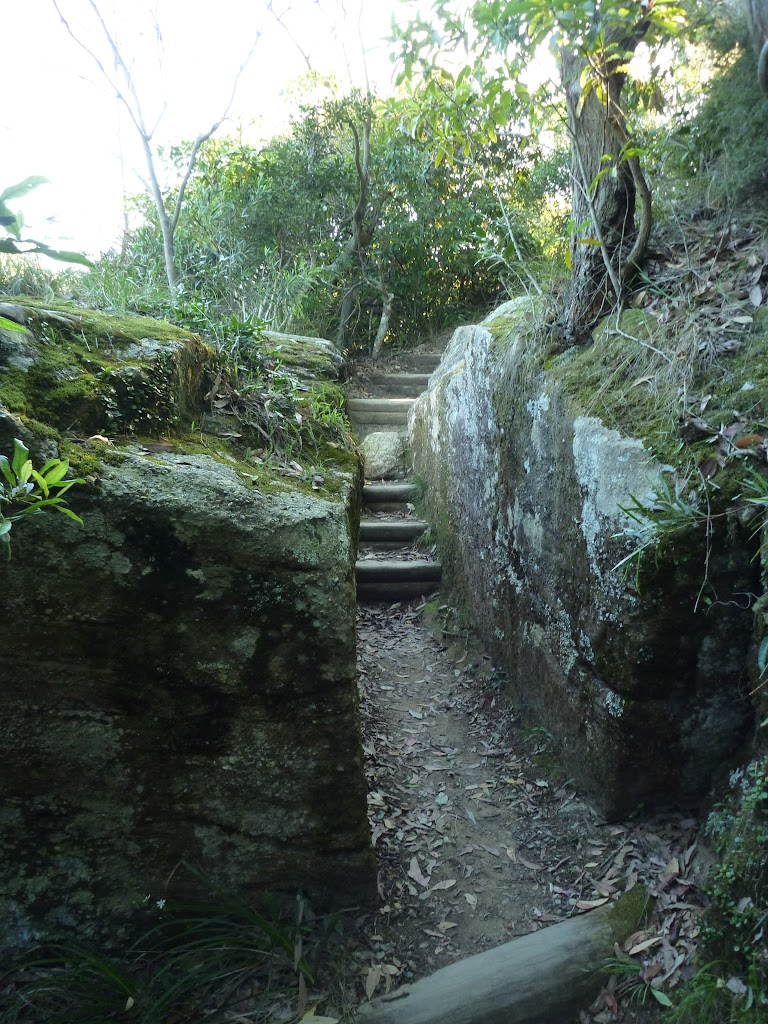 Steps near Leichhardts Lookout