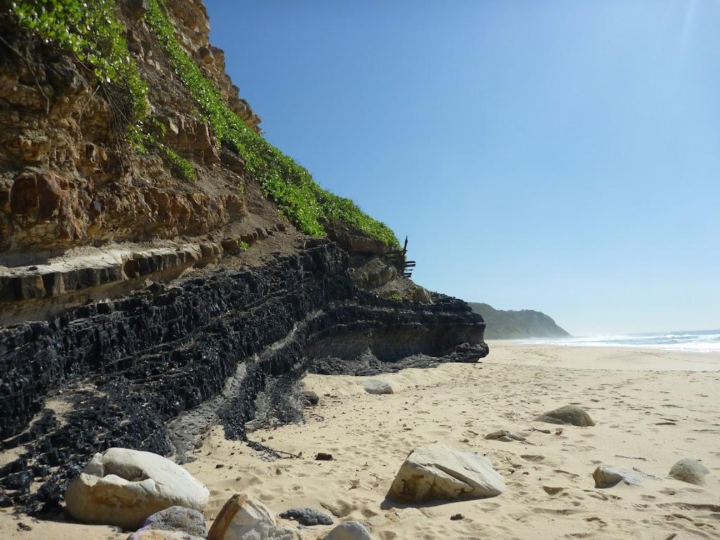 Coal seam on Burwood Beach