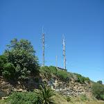 Back of Strzelecki Lookout (341005)