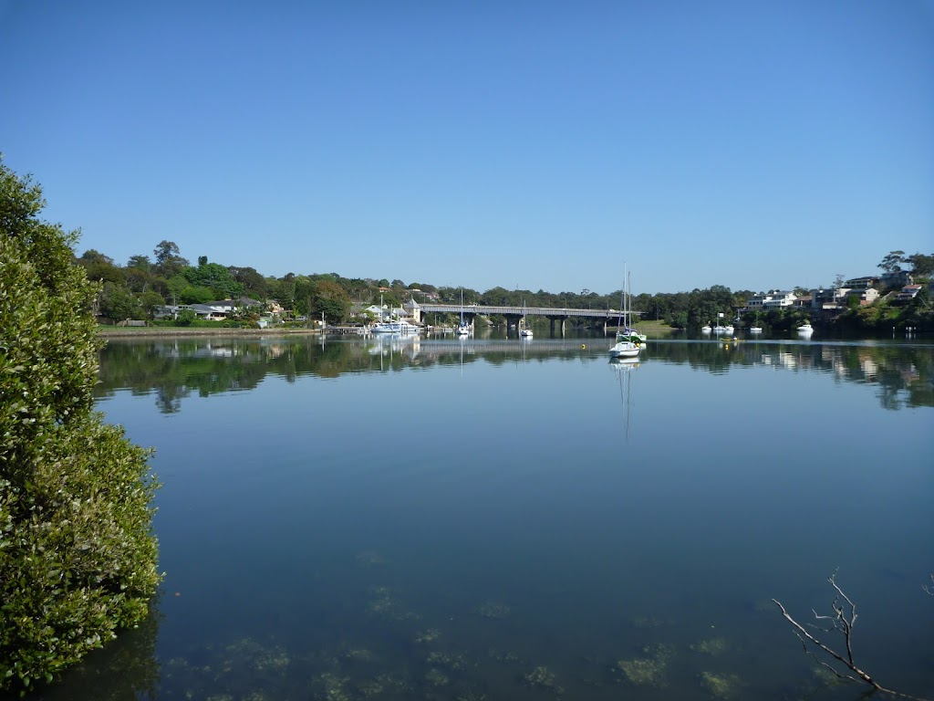 Lane Cove River from the end of Mount St (343459)