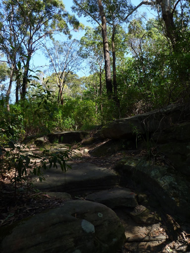 Rocky track near the end of Boronia Ave
