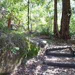 Timber steps near Boronia Ave