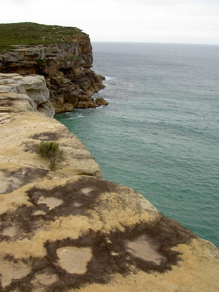 Looking over sea cliffs