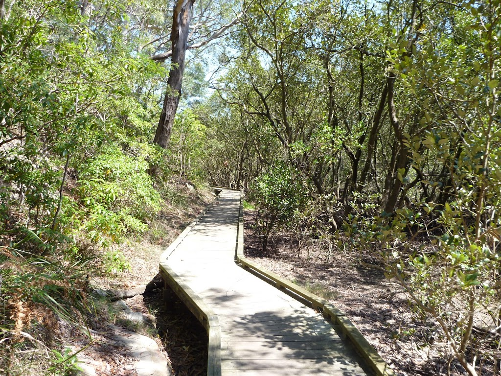 Winding along the boardwalk beside Buffalo Creek
