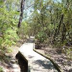 Winding along the boardwalk beside Buffalo Creek (344821)