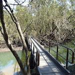 Bridge over Buffalo Creek